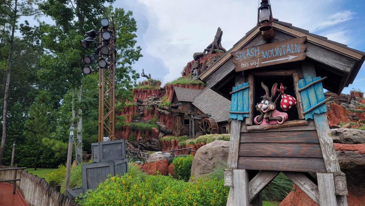 Scaffolding removed from Splash Mountain