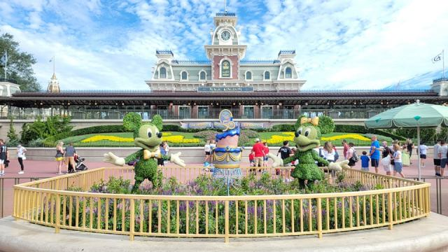 Mickey and Minnie Topiaries Celebrate the 50th Anniversary with a super cute display 5