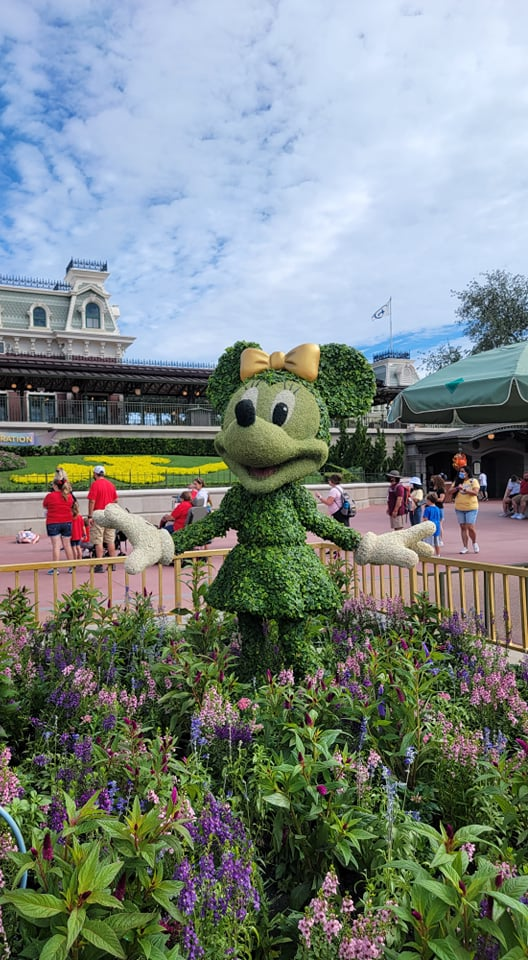 Mickey and Minnie Topiaries Celebrate the 50th Anniversary with a super cute display 4
