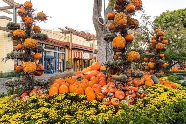 Halloween Returns to the Disneyland Resort 18