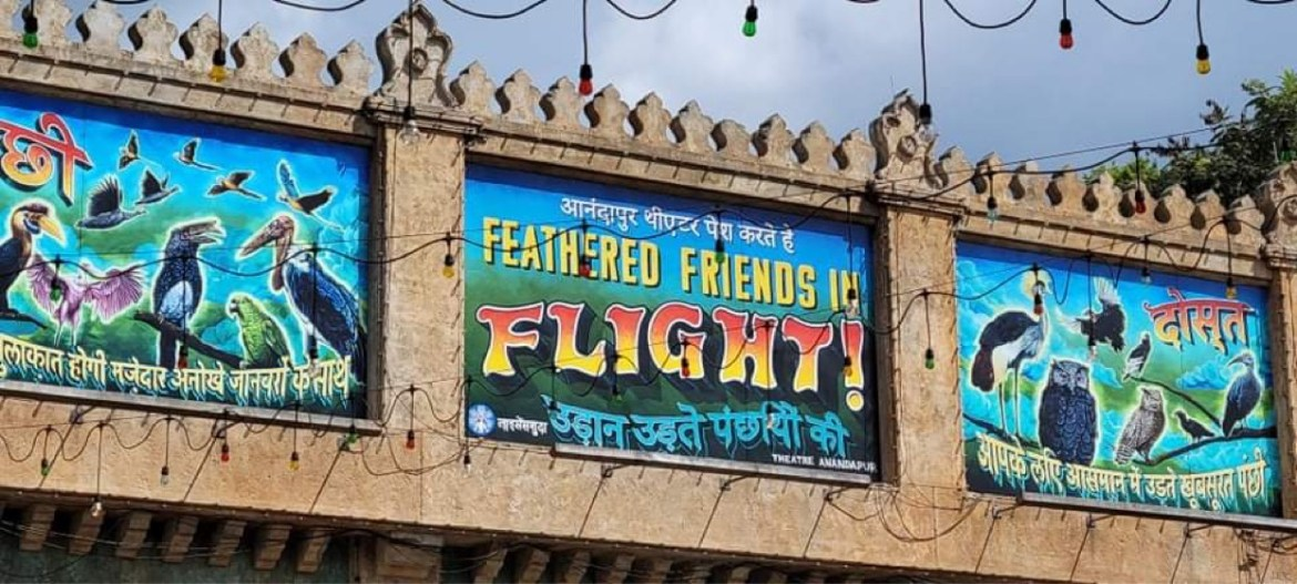 """Feathered Friends in Flight Replaces """"Up! A Great Bird Adventure"""" in Animal Kingdom"""