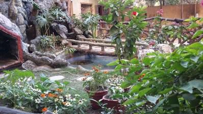 Attached garden 1