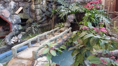 Attached garden 2
