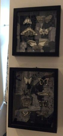 black and white bug shadowboxes by Suzanne Forbes 2016