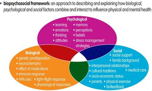 The Biopsychosocial Theory of Addiction | Addiction Facts | Sober NationSober Nation