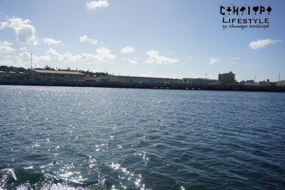 navy view
