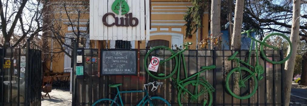 飲食空間Cuib × 當友愛自然的美夢在羅馬尼亞成真
