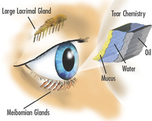 Dry eye assessment and treatment chipping norton opticians dry eye diagram ccuart Gallery