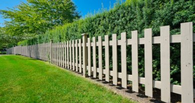 7 Things you Should Keep in Mind For Garden Fence Construction Importance of Garden Maintenance