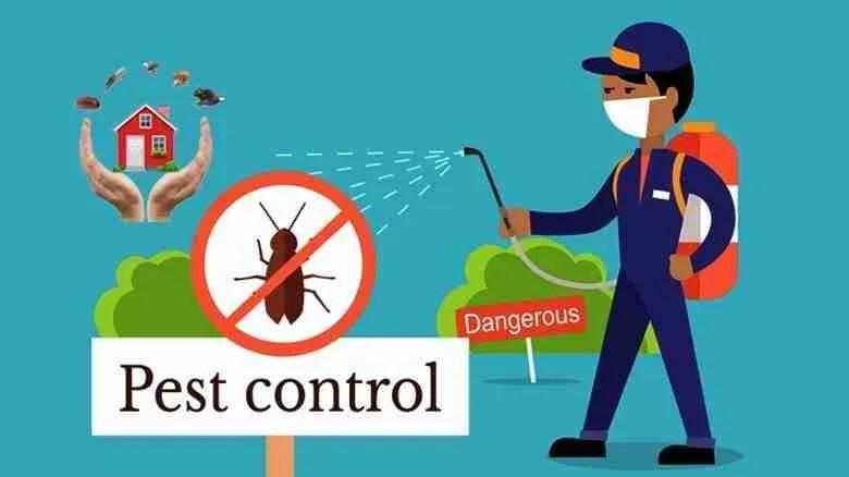 pest control Pest Control Remedies