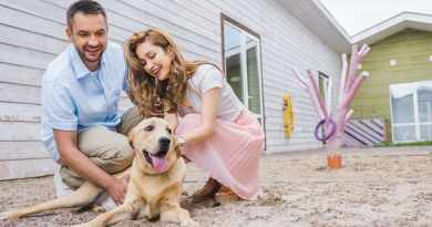happy couple palming their labrador dog Locked Out Of Your House