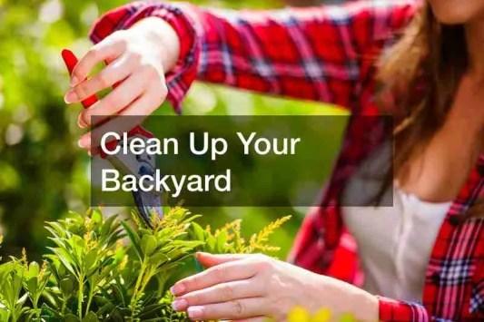 Inexpensive Backyard Upgrades