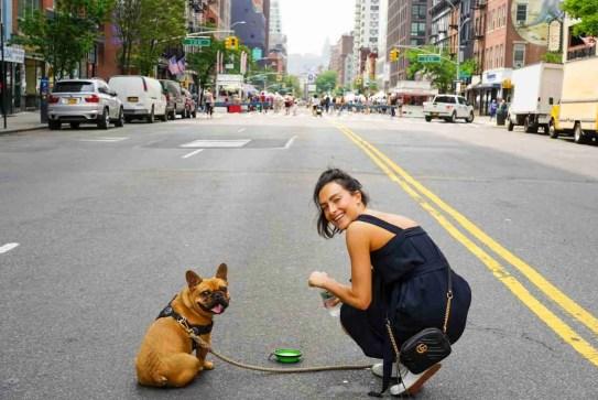 4R Keep Your Dog SafE