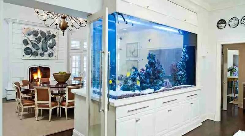 m Upgrading Your Aquarium