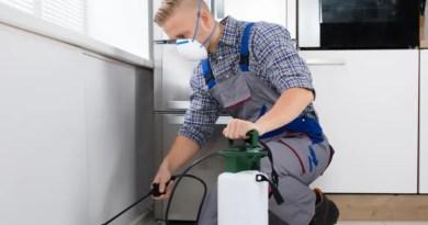m .m Keeping a House Clean