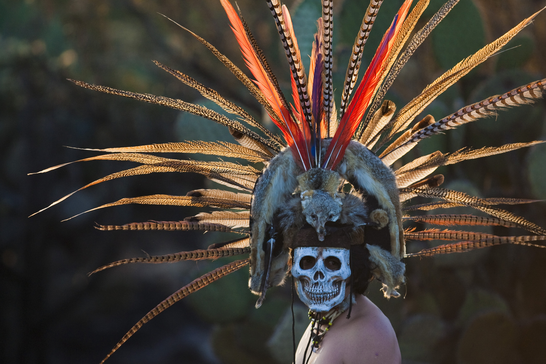 17 Amazing Facts About The Mayans That Will Definitely