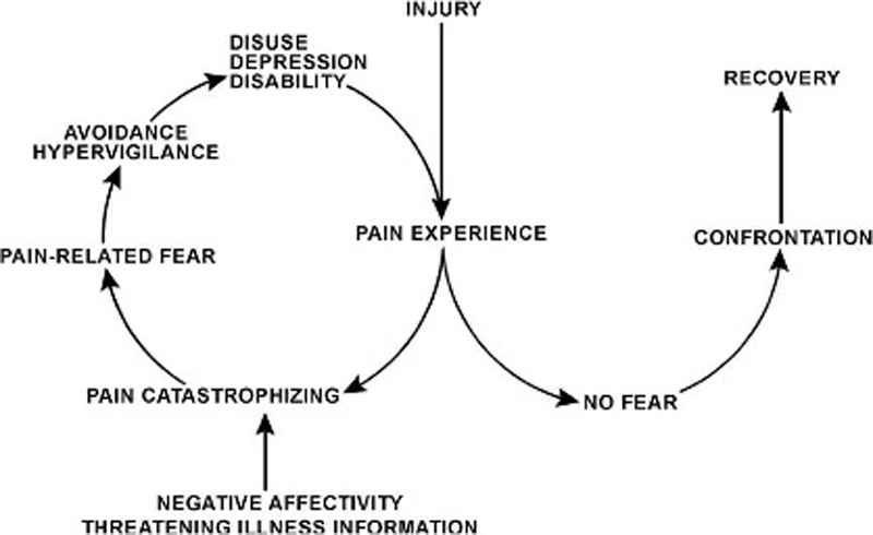 Pain-Related Fear-Dissociable Neural Sources of Different Fear Constructs