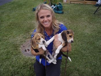 dr_amanda_kremer_with_beagle_puppies