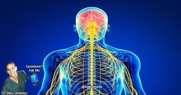 Blog-Image-Compiled-5-Nerve-Injuries_005.jpg