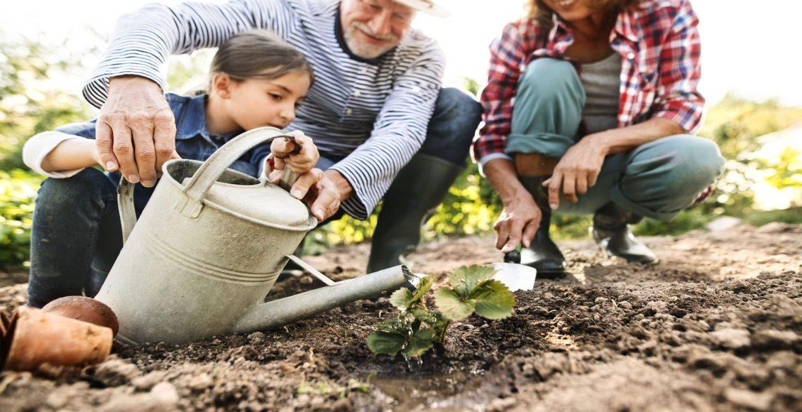 gardening spinal hygiene el paso tx.