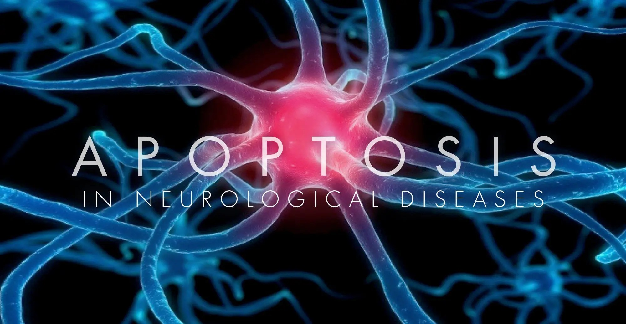 Apoptosis in Neurological Diseases