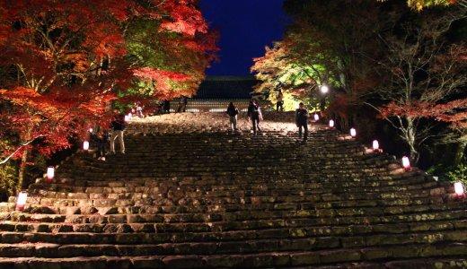 【紅葉最新情報】関西ウォーカーで絶景紅葉ライトアップ第1位に選ばれた神護寺の紅葉♡②