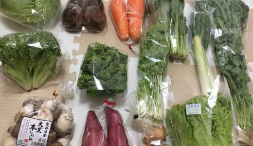 【ふるさと納税】京都府亀岡市から「亀岡産野菜セット」が届きました♪