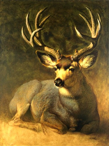 Winter Grey Buck by Ezra Tucker