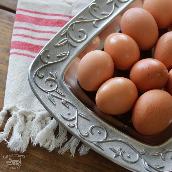 Besides broilers, Chapultepec Farm offers eggs at the Waco Farmers' Market on Saturdays.