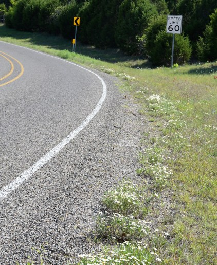 Bosque County roads offer enough curves and inclines for the seasoned rider.