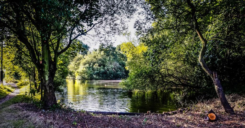 Rush Pond