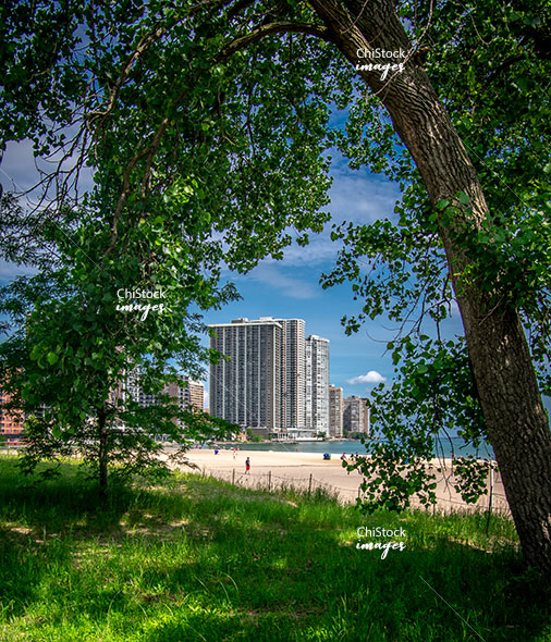 Kathy Osterman Beach at Lincoln Park Edgewater Chicago