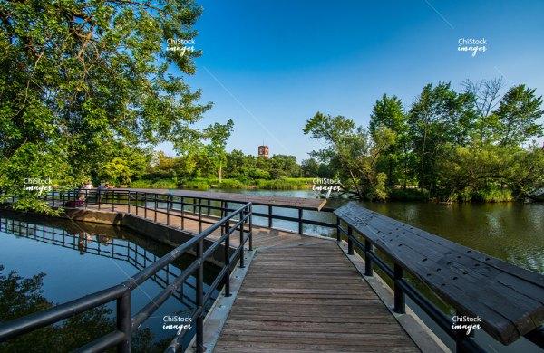 McKinley Park Lagoon Nature Area Chicago