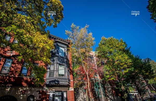 Courtyards and Flats in Lincoln Park Chicago