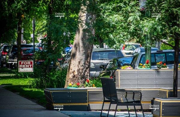 Side Street landscape Portage Park Chicago