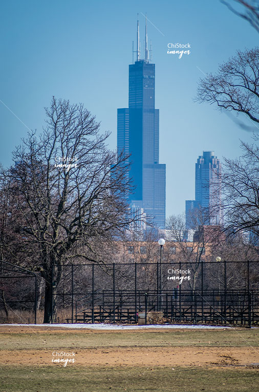 Humboldt Park with Sears Tower in the Background