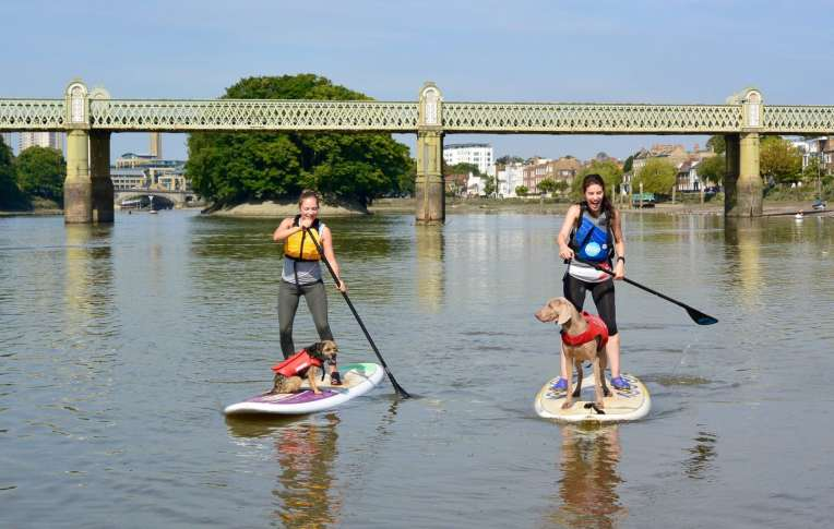 10% off Paddleboarding lessons and classes