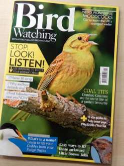 Andy Sands Wildlife photographer Yellowhammer - bird watching cover