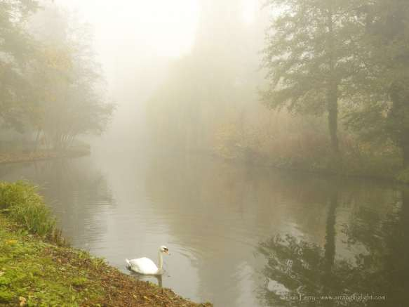 Chiswick Calendar Photographers Jon Perry Out of the Mist Enlightenshade