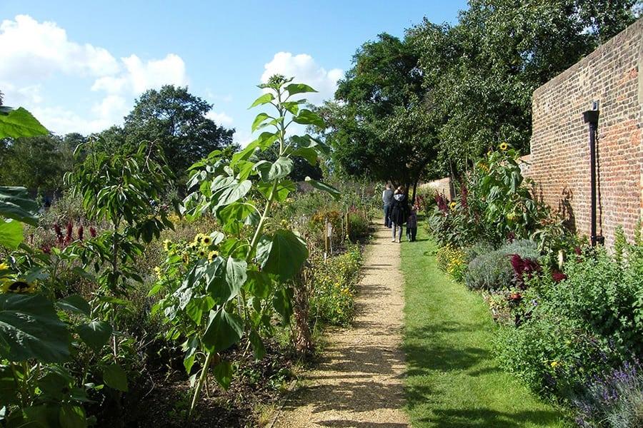 Karen Liebreich Kitchen-Garden-Chiswick-House-and-Gardens 2