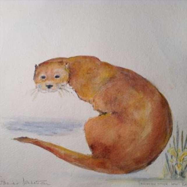 2016 Artists at Home Romaine Dennistoun, Barnes Otter