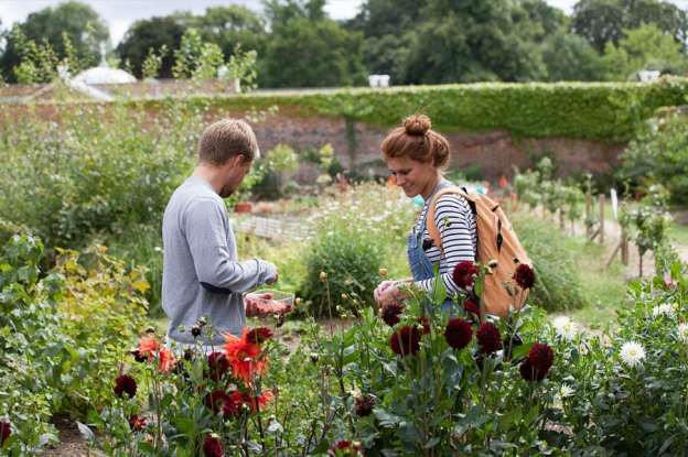 Education-Kitchen-Garden-Chiswick-House-and-Gardens-1