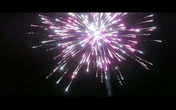Firework 1 web