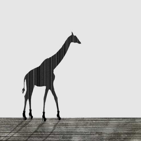 Giraffe 30x30cm by Rennie Pilgrem