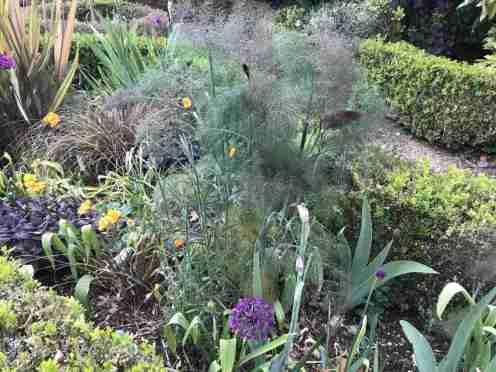 Tracy & Ian's garden 10__web