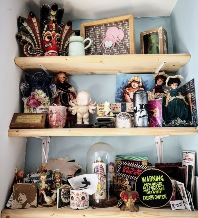 Carrie 6 - shelves with clutter__web