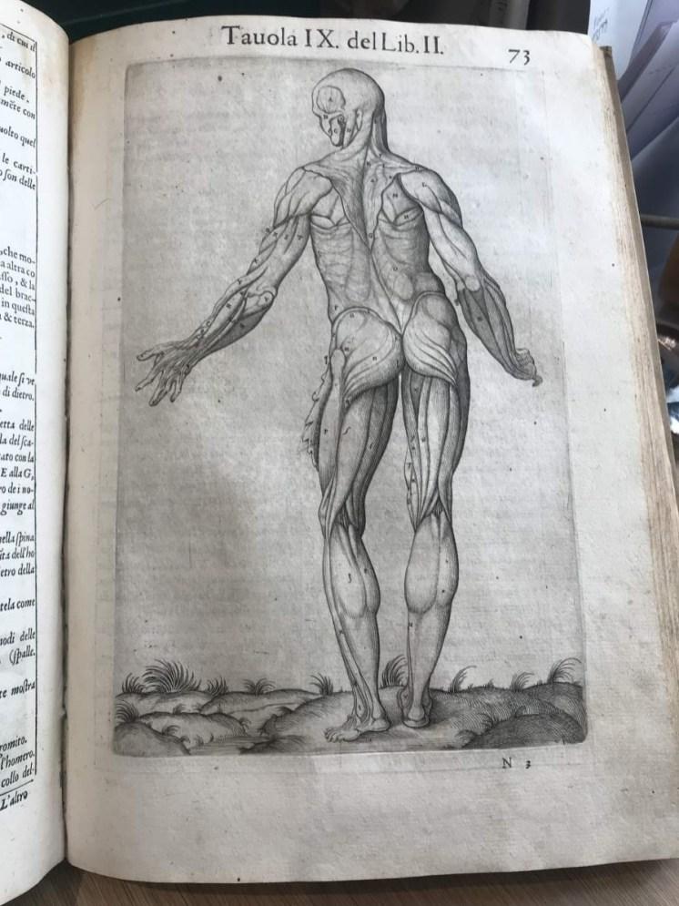 Medical text 1__web