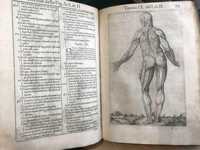 Medical text 2__web