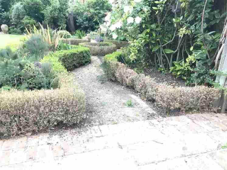 Tracy & Ian's garden 27__web