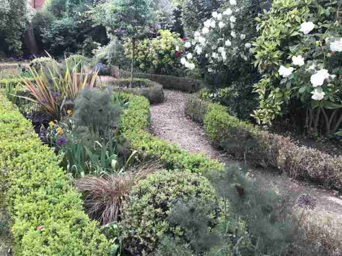 Tracy & Ian's garden 9__web
